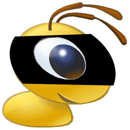 webmoney-spy